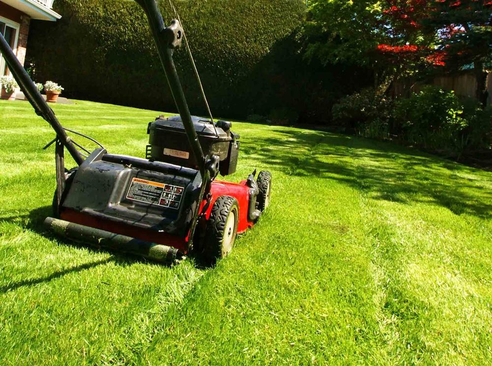 Lawn Mowing Melbourne