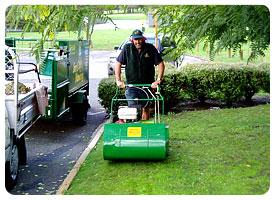 Lawn Care Melbourne