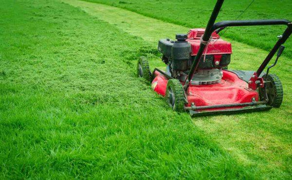 lawn mowing service melbourne
