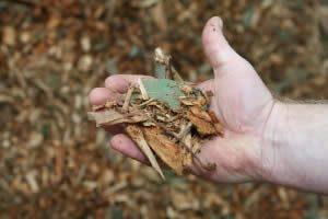 bush-mulch