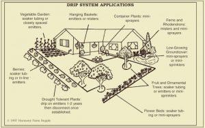 drip-system-home-design