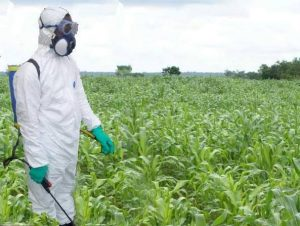 Herbicide Use PPE