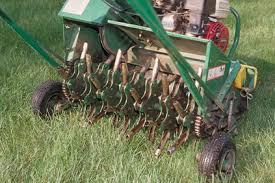 lawn-dethatching-3
